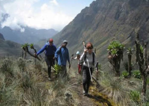 hiking-and-nature-walks