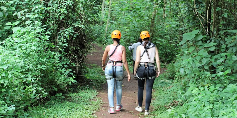Nature Walks in Mabira Forest Uganda