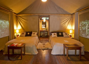 sanctuary-gorilla-forest-camp-1