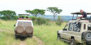 Best Game Drives & Boat Cruises in Uganda, Uganda Wildlife Game Drive