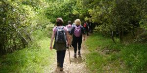 Hiking and Nature Walks in Uganda, Rwanda & DR Congo